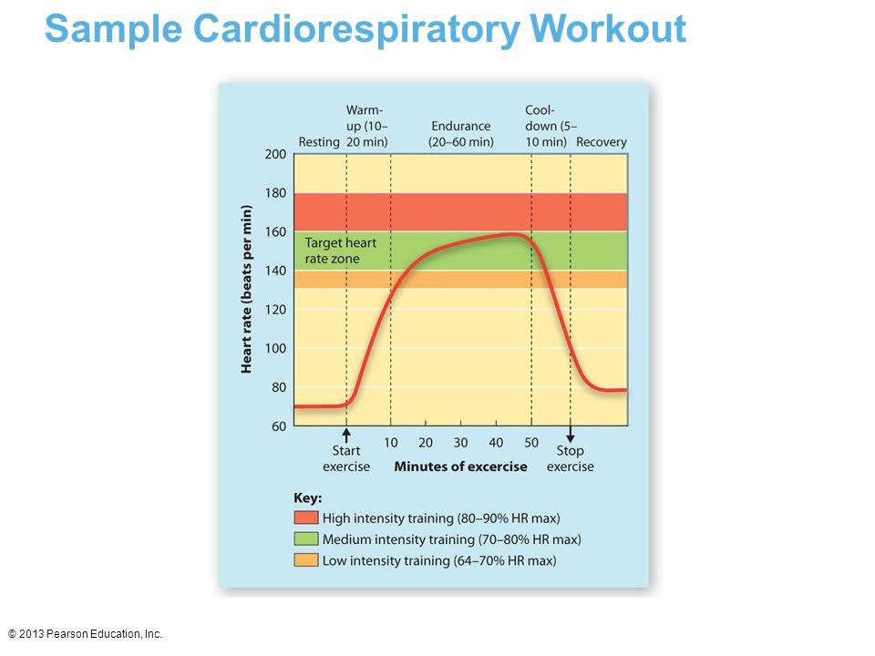 © 2013 Pearson Education, Inc. Sample Cardiorespiratory Workout