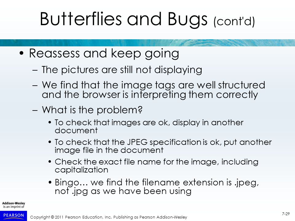 Copyright © 2011 Pearson Education, Inc. Publishing as Pearson Addison-Wesley 7-29 Butterflies and Bugs (cont'd) Reassess and keep going –The pictures