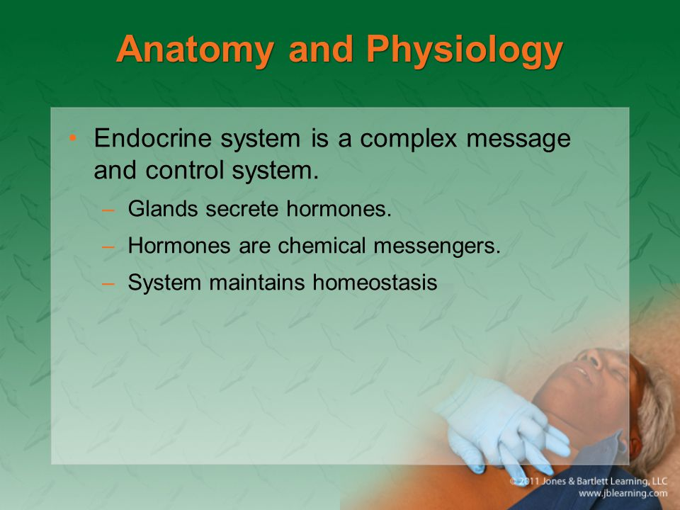 Anatomy and Physiology Endocrine system is a complex message and control system. –Glands secrete hormones. –Hormones are chemical messengers. –System