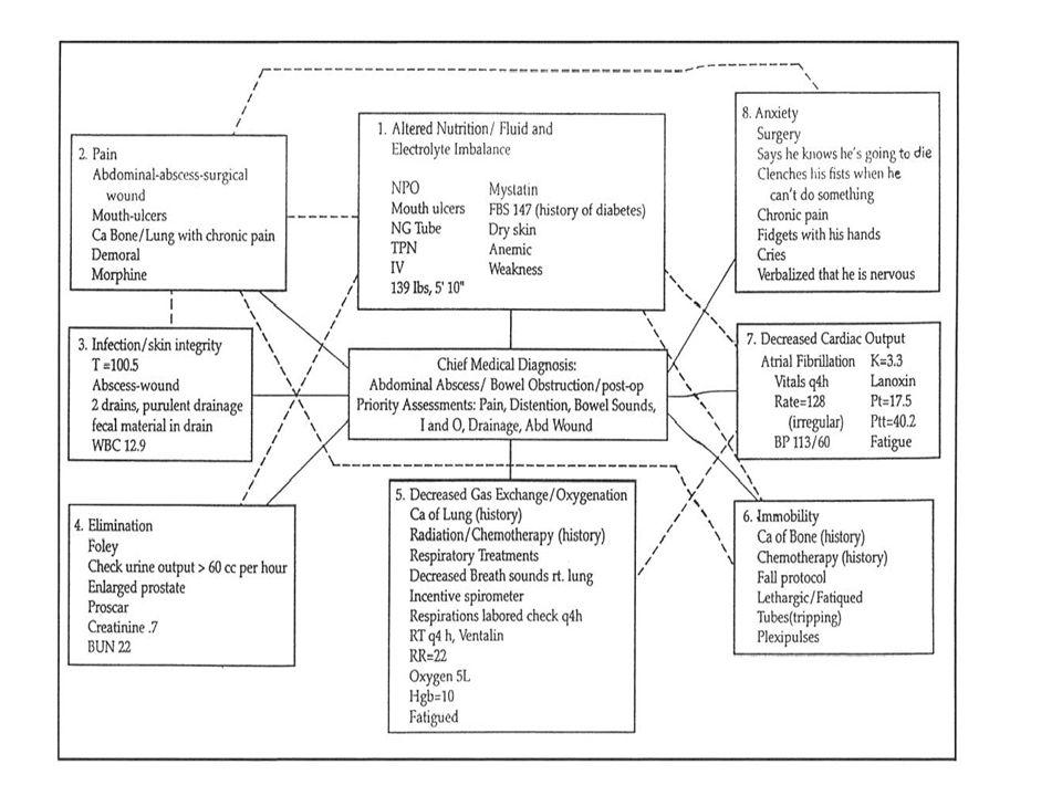 Care Plan Concept Map Workshop Ppt Download