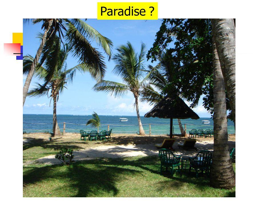 Paradise ?