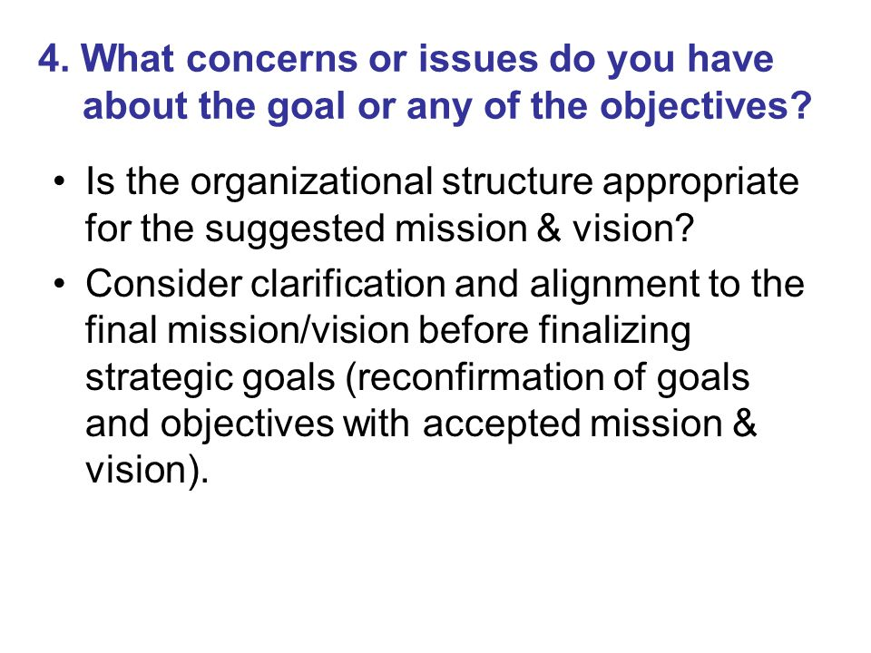 4. What concerns or issues do you have about the goal or any of the objectives? Is the organizational structure appropriate for the suggested mission