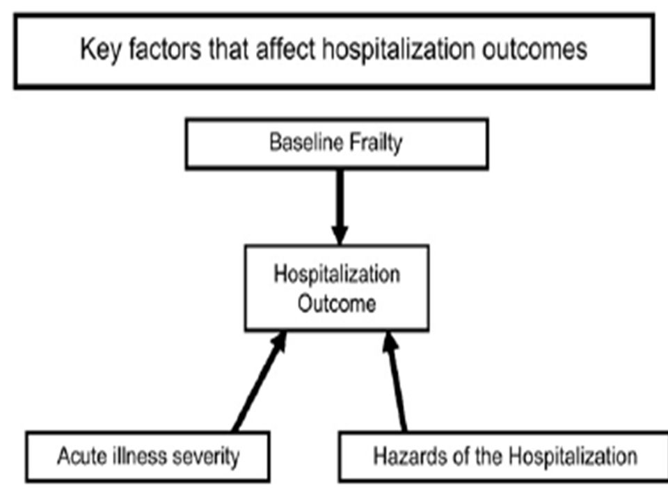 Hazards Functional decline Functional decline Immobility Immobility Delirium Delirium Depression Depression Restraints Restraints Adverse drug reaction Nosocomial infections Incontinence Malnutrition Pressure Ulcers
