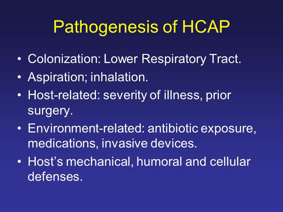 Pathogenesis of HCAP Colonization: Lower Respiratory Tract.