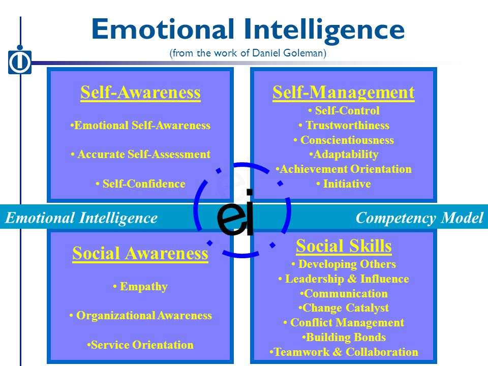 i e Self-Awareness Emotional Self-Awareness Accurate Self-Assessment Self-Confidence Social Awareness Empathy Organizational Awareness Service Orientation Social Skills Developing Others Leadership & Influence Communication Change Catalyst Conflict Management Building Bonds Teamwork & Collaboration Self-Management Self-Control Trustworthiness Conscientiousness Adaptability Achievement Orientation Initiative Competency ModelEmotional Intelligence (from the work of Daniel Goleman) i e