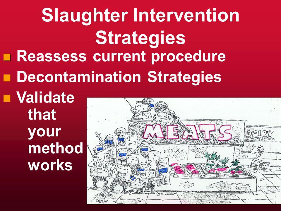 Slaughter Intervention Strategies n n Reassess current procedure n n Decontamination Strategies n n Validate that your method works