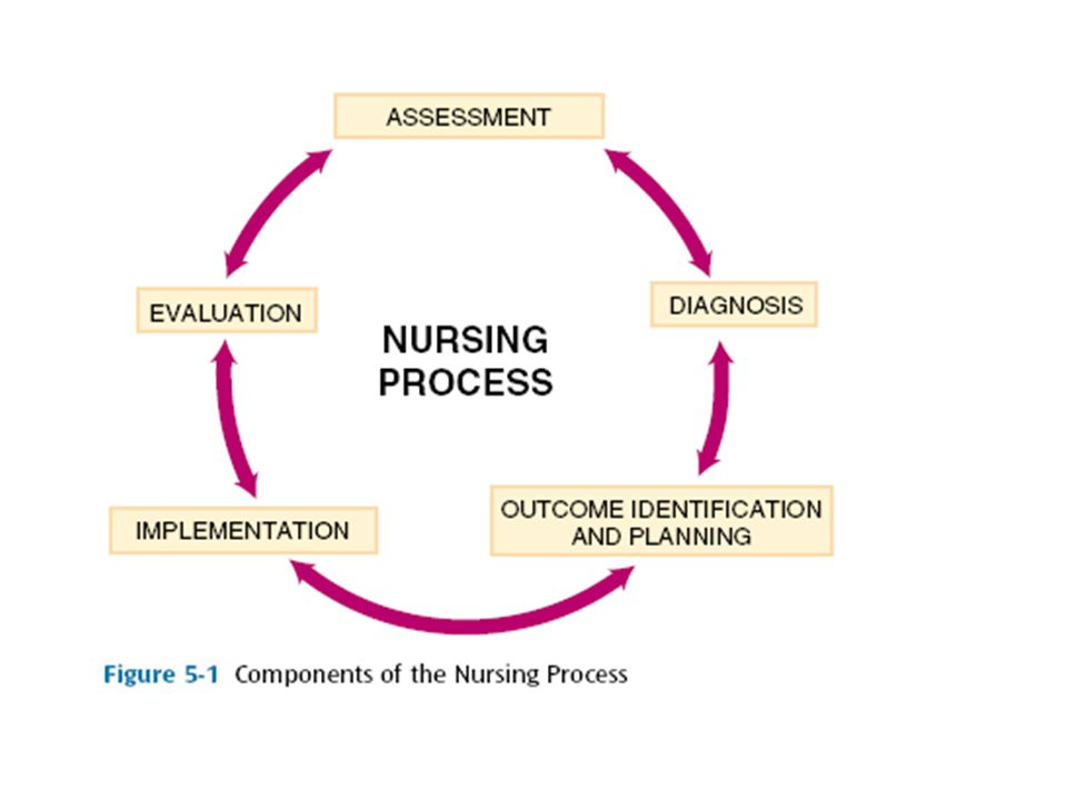 Nursing Assessment The first phase of the nursing process, called assessment, is the collection of data for nursing purposes.