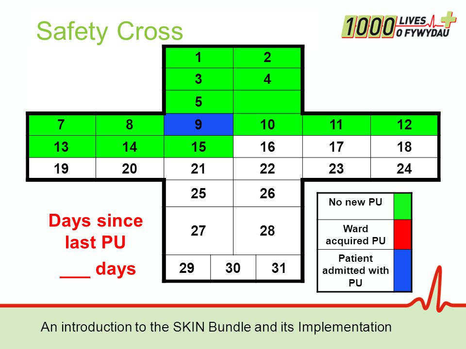 An introduction to the SKIN Bundle and its Implementation Safety Cross 12 34 5 789101112 131415161718 192021222324 2526 Days since last PU 2728 ___ days 293031 No new PU Ward acquired PU Patient admitted with PU