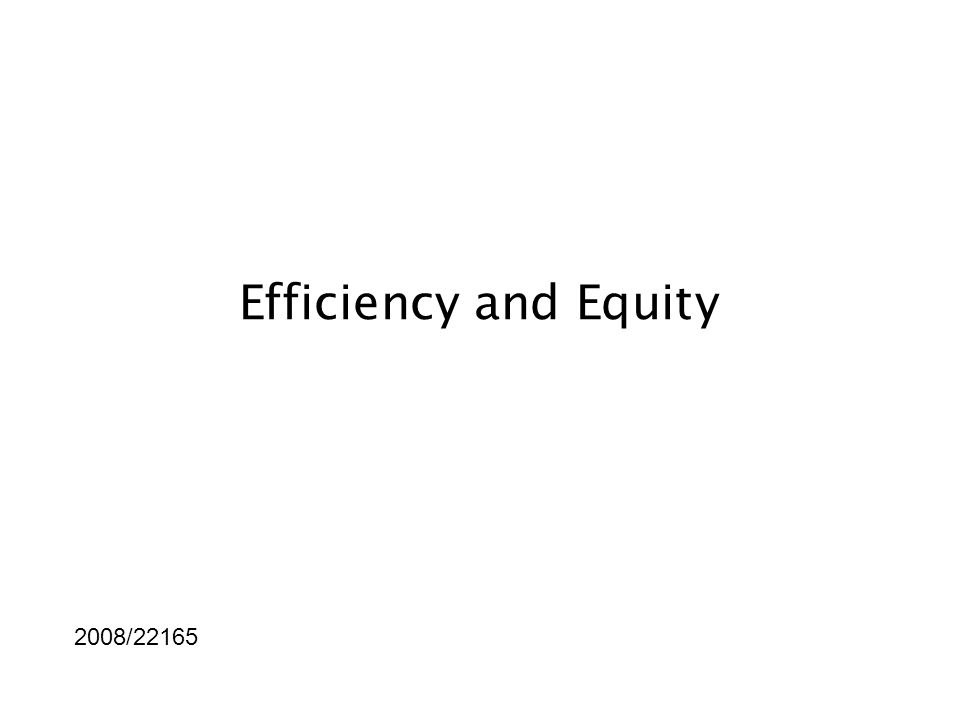 Efficiency and Equity 2008/22165