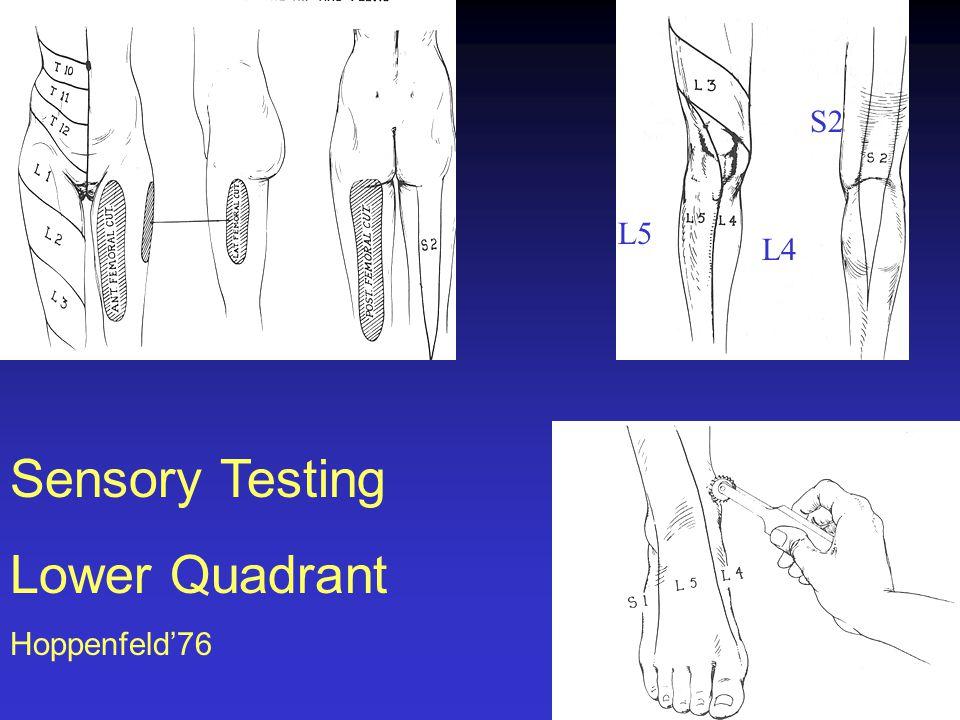 L5 L4 S2 Sensory Testing Lower Quadrant Hoppenfeld'76