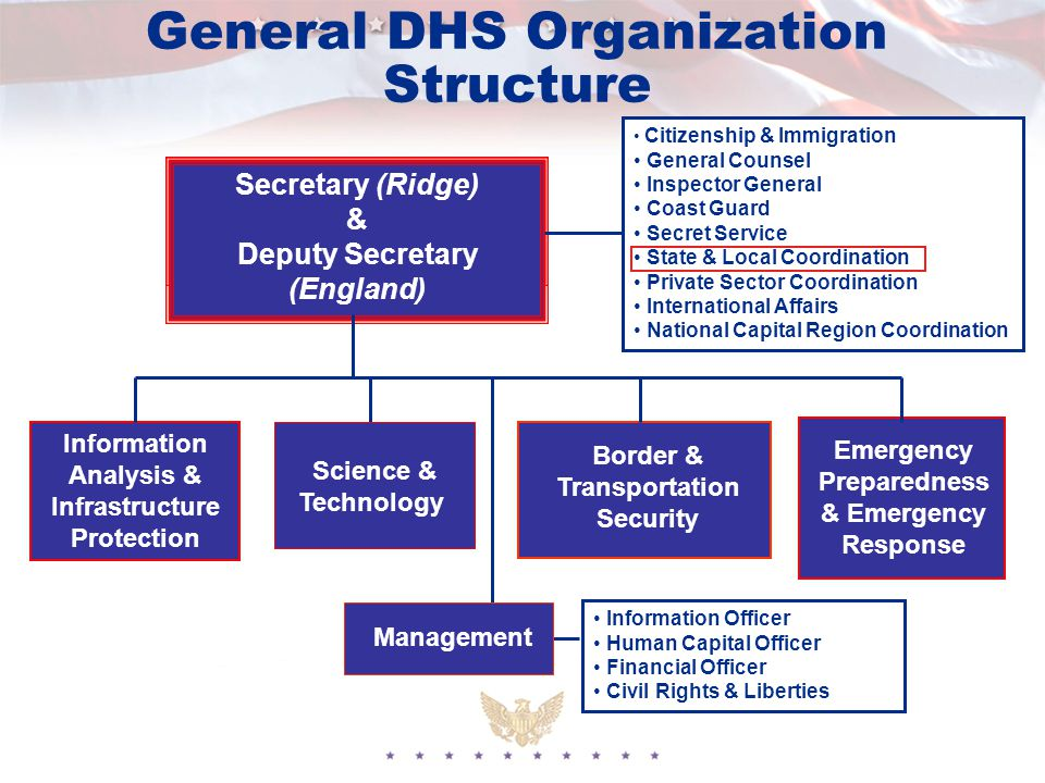 General DHS Organization Structure Secretary (Ridge) & Deputy Secretary (England) Information Analysis & Infrastructure Protection Border & Transportation Security Emergency Preparedness & Emergency Response Management Citizenship & Immigration General Counsel Inspector General Coast Guard Secret Service State & Local Coordination Private Sector Coordination International Affairs National Capital Region Coordination Information Officer Human Capital Officer Financial Officer Civil Rights & Liberties Science & Technology