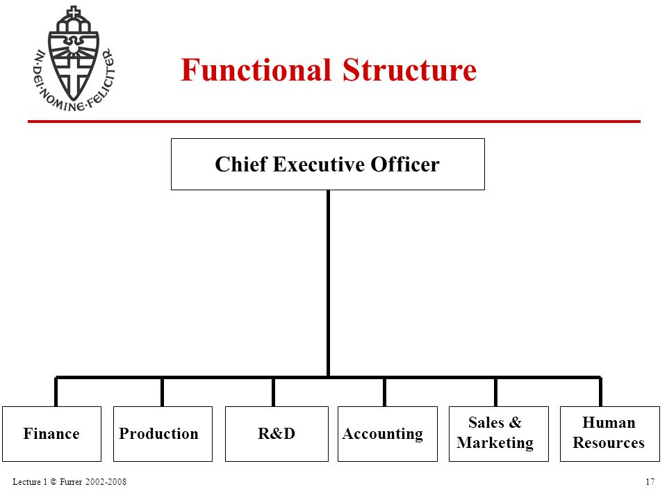 Lecture 1 © Furrer 2002-200817 ProductionFinanceR&DAccounting Sales & Marketing Human Resources Chief Executive Officer Functional Structure