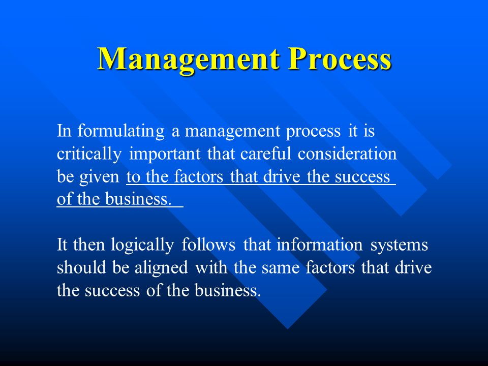 Management Process In formulating a management process it is critically important that careful consideration be given to the factors that drive the success of the business.