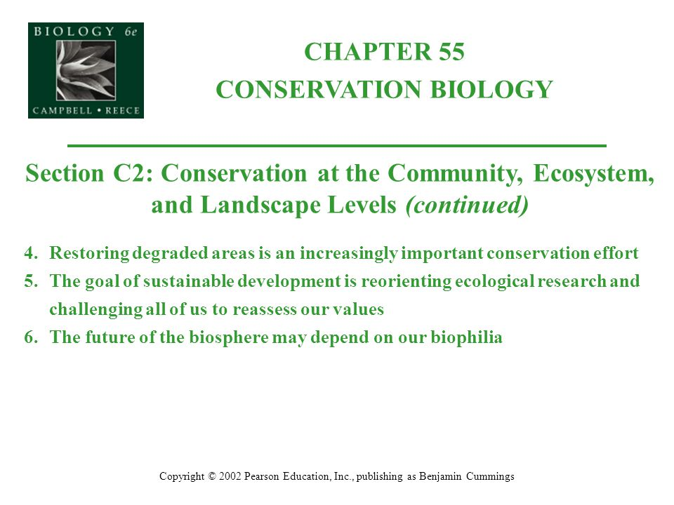 CHAPTER 55 CONSERVATION BIOLOGY Copyright © 2002 Pearson Education, Inc., publishing as Benjamin Cummings Section C2: Conservation at the Community, Ecosystem, and Landscape Levels (continued) 4.Restoring degraded areas is an increasingly important conservation effort 5.The goal of sustainable development is reorienting ecological research and challenging all of us to reassess our values 6.The future of the biosphere may depend on our biophilia