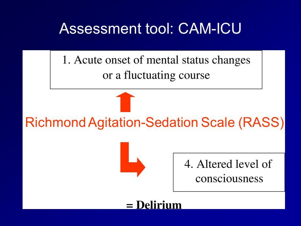 Richmond Agitation-Sedation Scale (RASS)