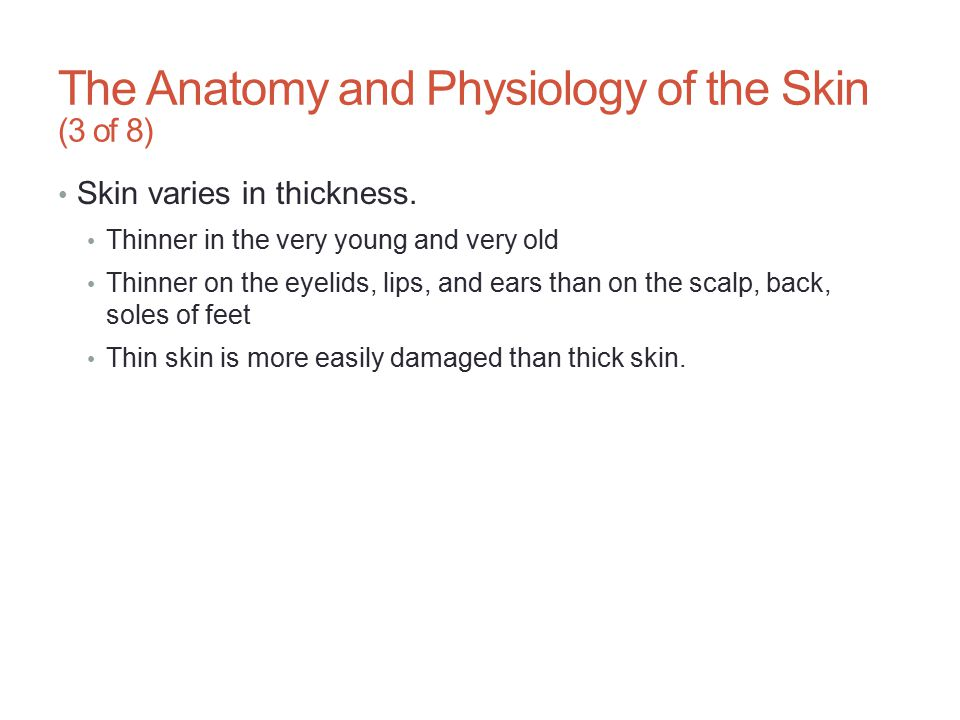 The Anatomy and Physiology of the Skin (3 of 8) Skin varies in thickness. Thinner in the very young and very old Thinner on the eyelids, lips, and ear