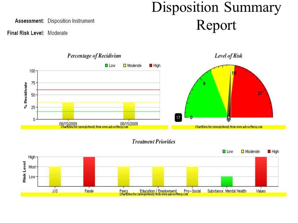 Disposition Summary Report