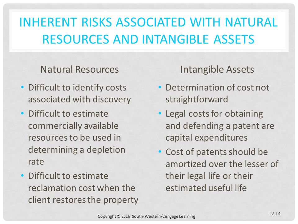 Copyright © 2016 South-Western/Cengage Learning 12-14 INHERENT RISKS ASSOCIATED WITH NATURAL RESOURCES AND INTANGIBLE ASSETS Natural Resources Difficu