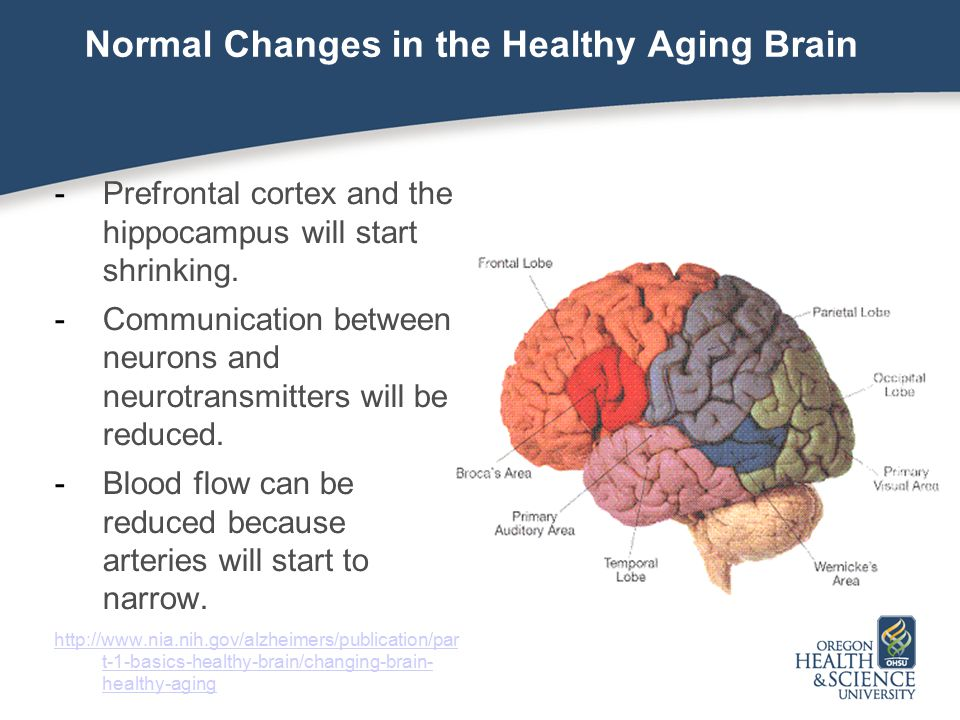 Normal Changes in the Healthy Aging Brain Plaques and tangles can develop outside of and inside neurons in much smaller amounts.