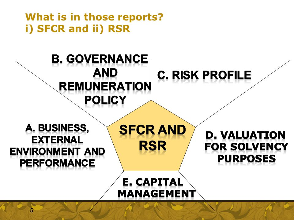 What is in those reports? i) SFCR and ii) RSR  5