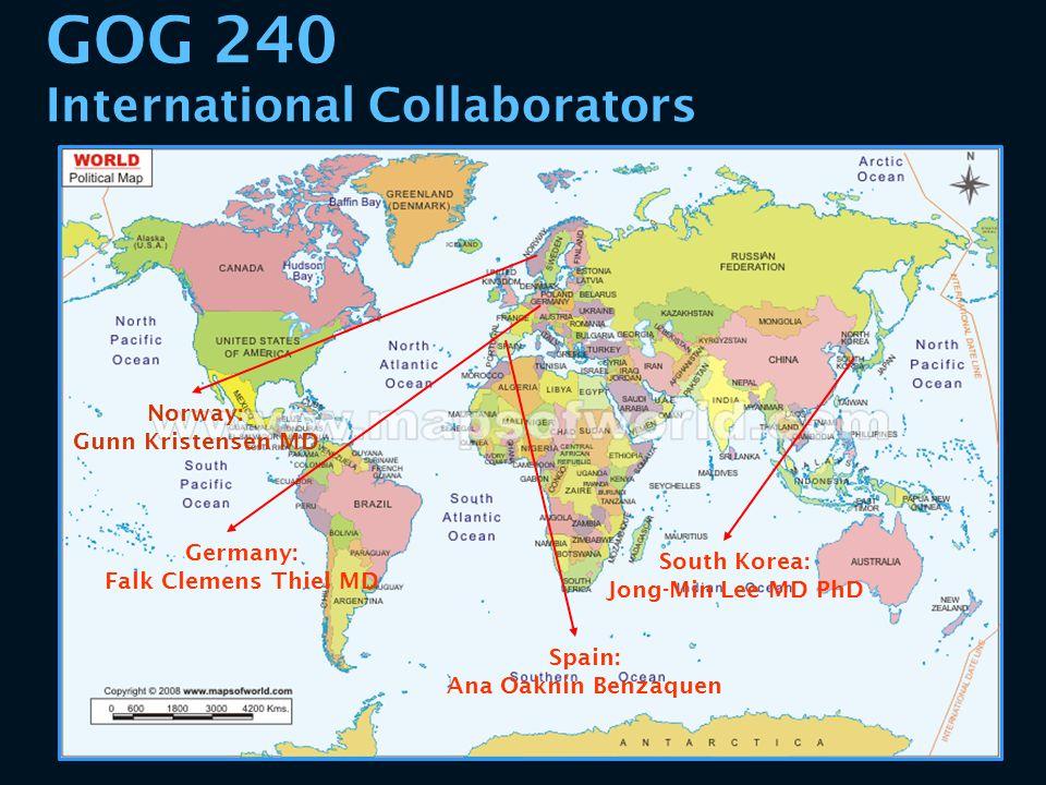 GOG 240 International Collaborators Spain: Ana Oaknin Benzaquen Norway: Gunn Kristensen MD South Korea: Jong-Min Lee MD PhD Germany: Falk Clemens Thie