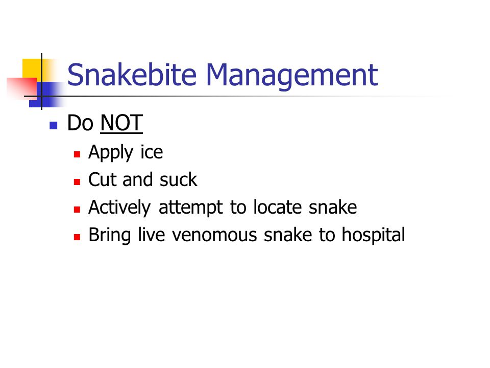 Snakebite Management Do NOT Apply ice Cut and suck Actively attempt to locate snake Bring live venomous snake to hospital