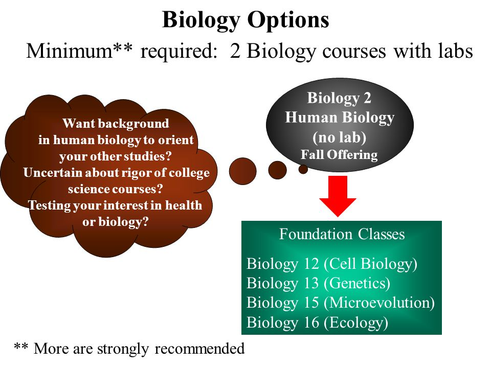 Biology Options Minimum** required: 2 Biology courses with labs Lab Courses Foundation Classes Biology 12 (Cell Biology) Biology 13 (Genetics) Biology