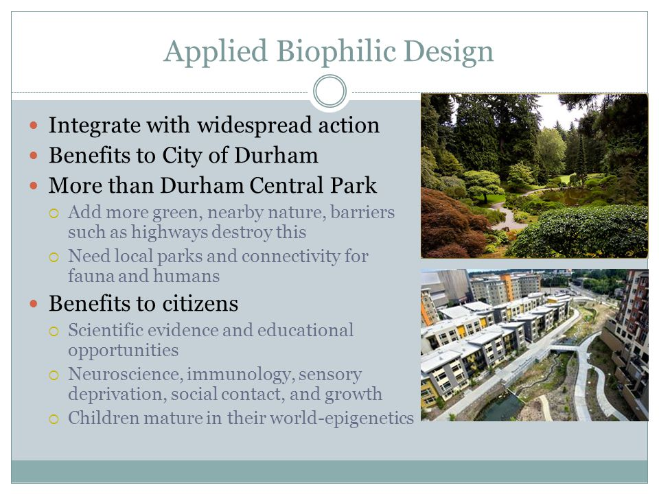 Applied Biophilic Design Integrate with widespread action Benefits to City of Durham More than Durham Central Park  Add more green, nearby nature, barriers such as highways destroy this  Need local parks and connectivity for fauna and humans Benefits to citizens  Scientific evidence and educational opportunities  Neuroscience, immunology, sensory deprivation, social contact, and growth  Children mature in their world-epigenetics
