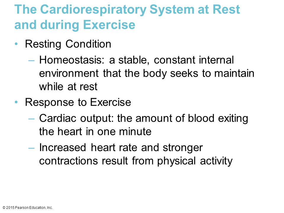 The Cardiorespiratory System at Rest and during Exercise Resting Condition –Homeostasis: a stable, constant internal environment that the body seeks t