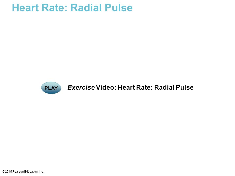 Heart Rate: Radial Pulse © 2015 Pearson Education, Inc. Exercise Video: Heart Rate: Radial Pulse PLAY