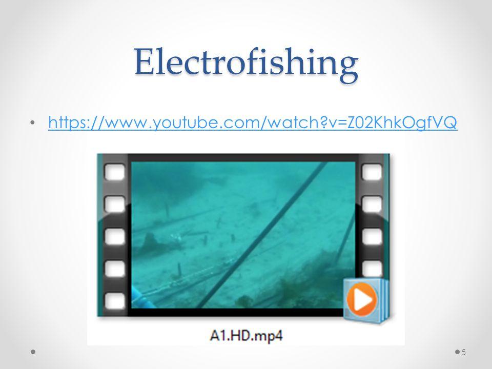 Electrofishing https://www.youtube.com/watch v=Z02KhkOgfVQ 5