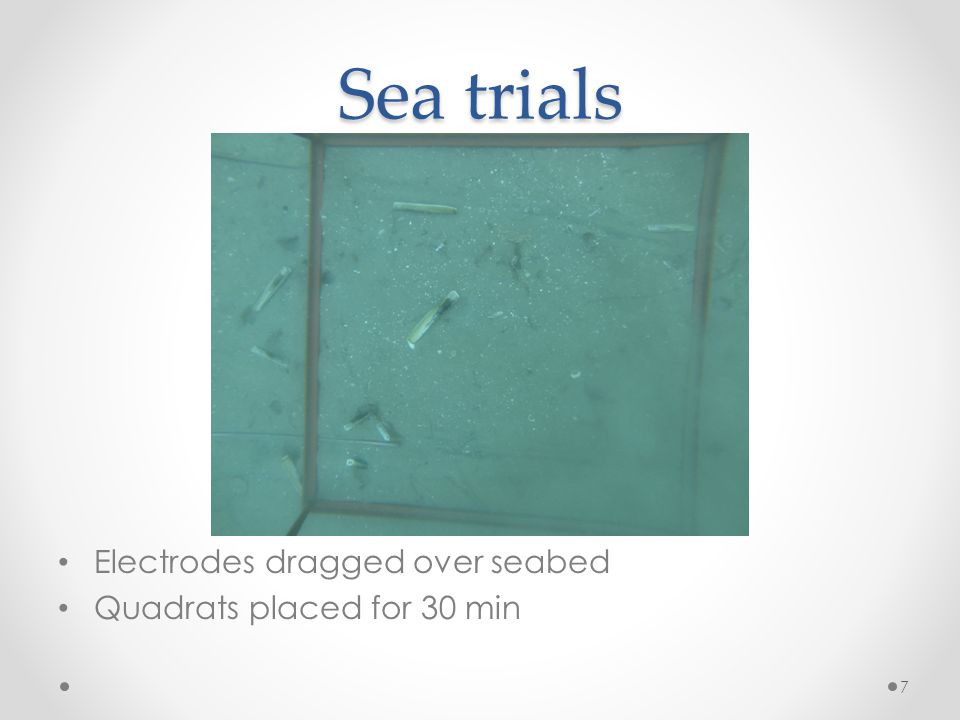 Sea trials Electrodes dragged over seabed Quadrats placed for 30 min 7