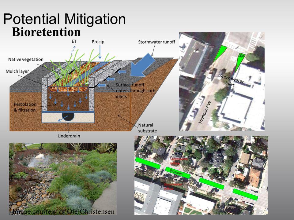 Potential Mitigation Bioretention Image courtesy of Ole Christensen