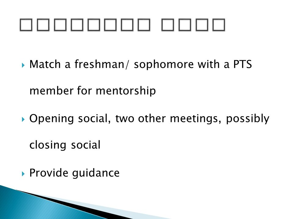  Match a freshman/ sophomore with a PTS member for mentorship  Opening social, two other meetings, possibly closing social  Provide guidance