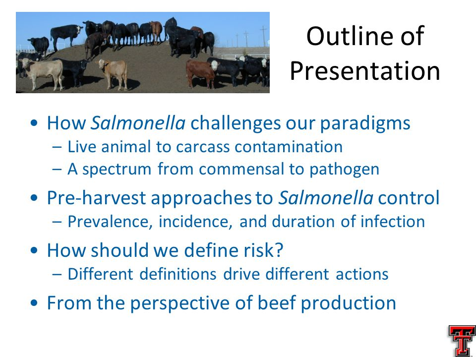 Outline of Presentation How Salmonella challenges our paradigms –Live animal to carcass contamination –A spectrum from commensal to pathogen Pre-harvest approaches to Salmonella control –Prevalence, incidence, and duration of infection How should we define risk.