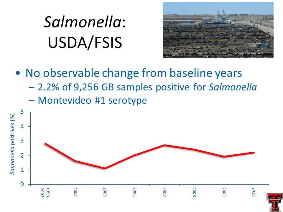 No observable change from baseline years –2.2% of 9,256 GB samples positive for Salmonella –Montevideo #1 serotype Salmonella: USDA/FSIS