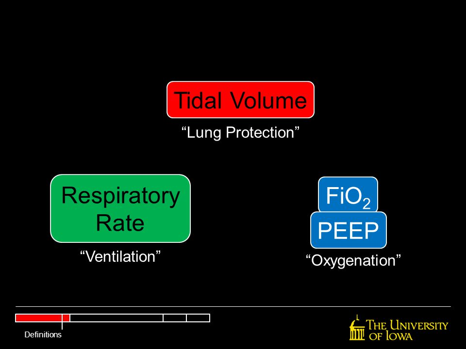 """Tidal Volume Respiratory Rate FiO 2 PEEP """"Lung Protection"""" """"Ventilation"""" """"Oxygenation"""" Definitions"""