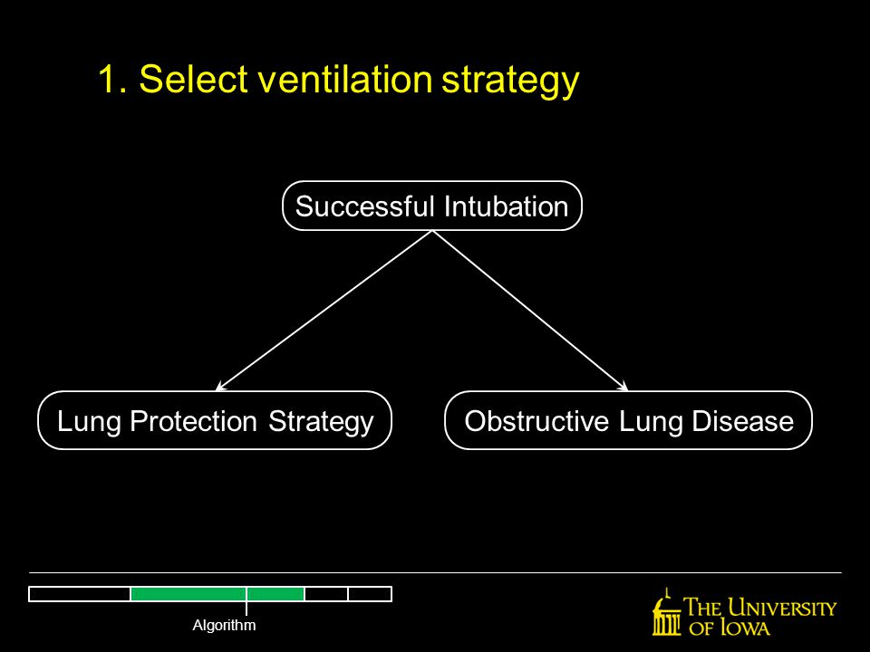 Successful Intubation Lung Protection StrategyObstructive Lung Disease 1. Select ventilation strategy Algorithm