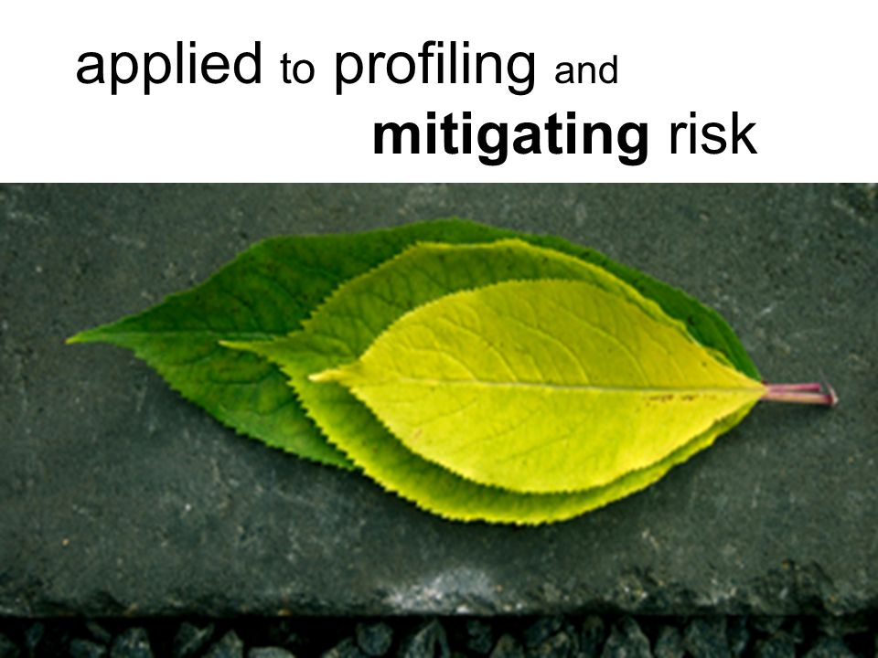 applied to profiling and mitigating risk