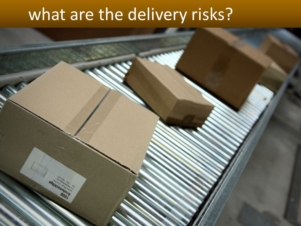what are the delivery risks?