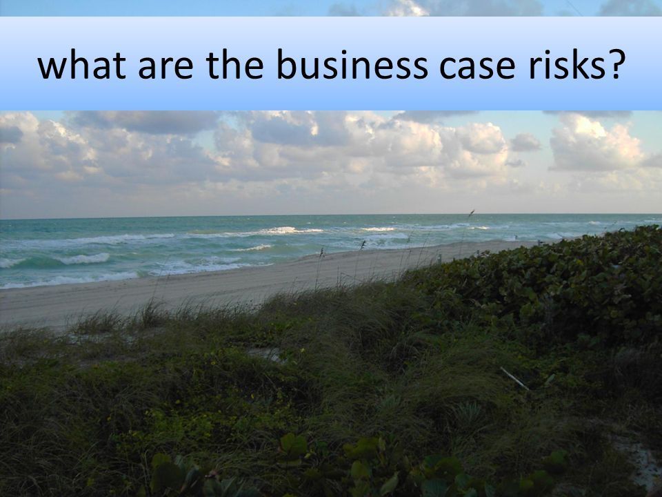 what are the business case risks?