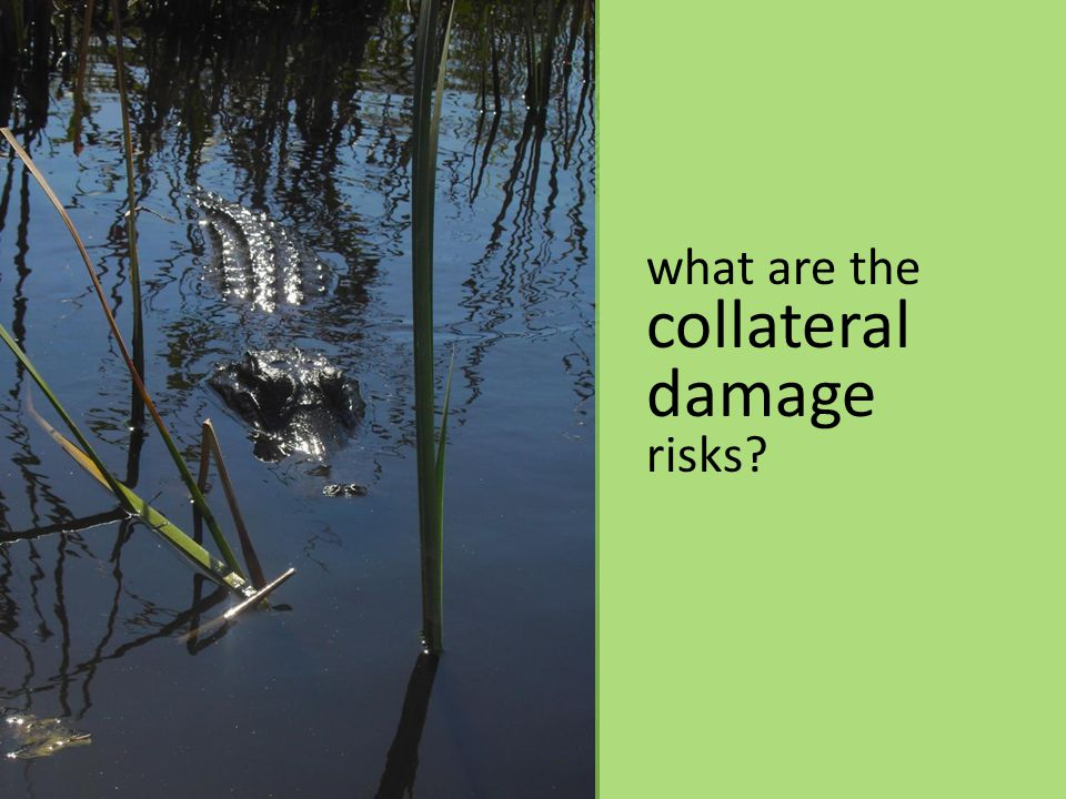 what are the collateral damage risks?