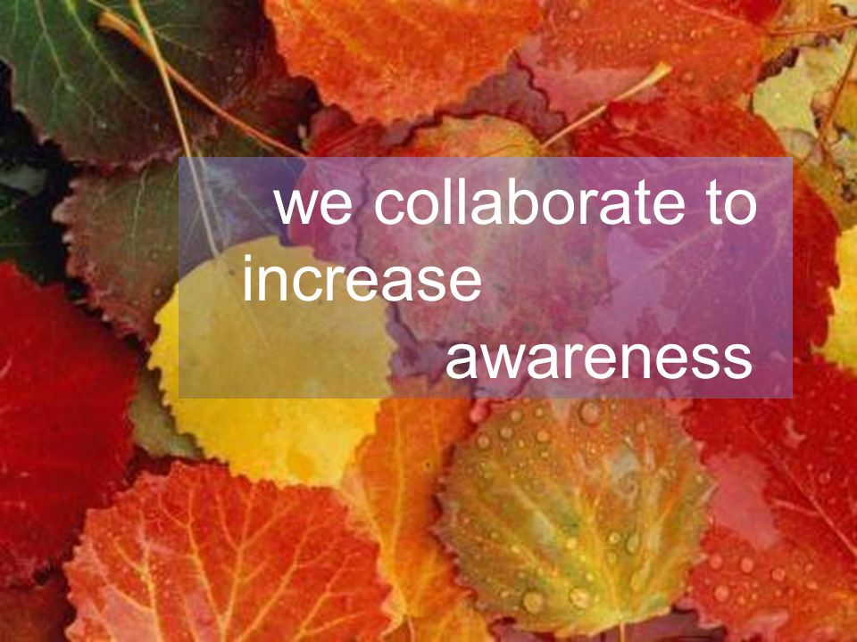 Leading Agile Collaboration Model Collaboration Process we collaborate to increase awareness