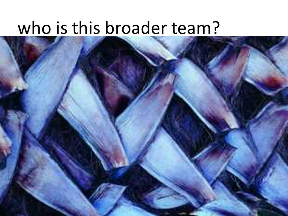 who is this broader team?