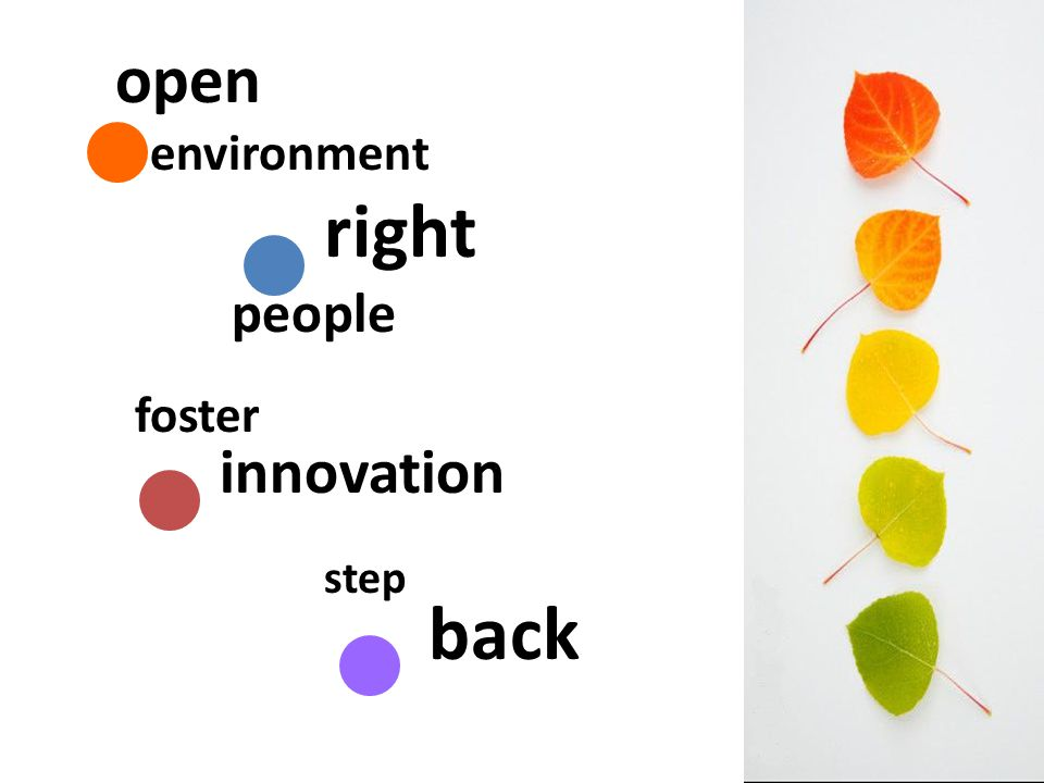 open environment right people foster innovation step back