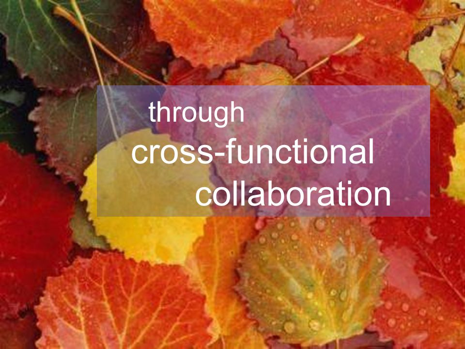 Leading Agile Collaboration Model Collaboration Process through cross-functional collaboration