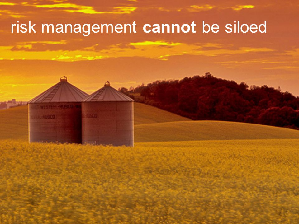risk management cannot be siloed