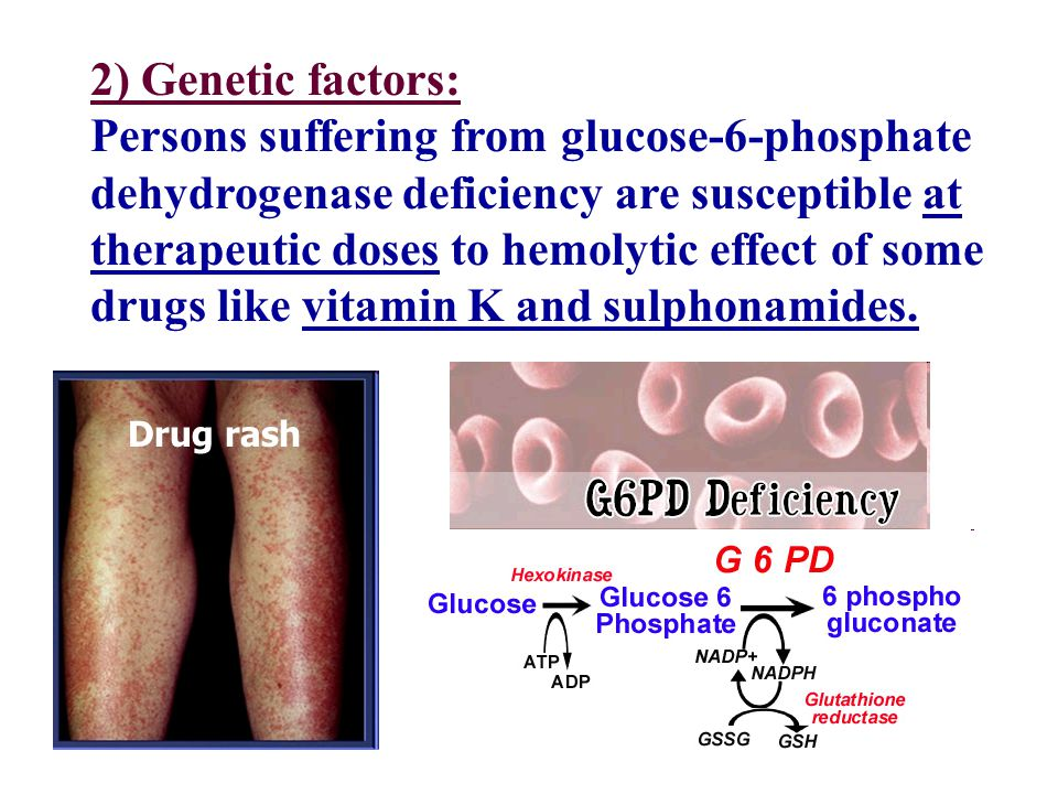6 Drug rash 2) Genetic factors: Persons suffering from glucose-6-phosphate dehydrogenase deficiency are susceptible at therapeutic doses to hemolytic