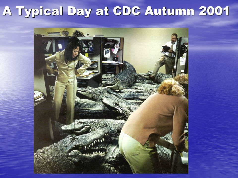 A Typical Day at CDC Autumn 2001