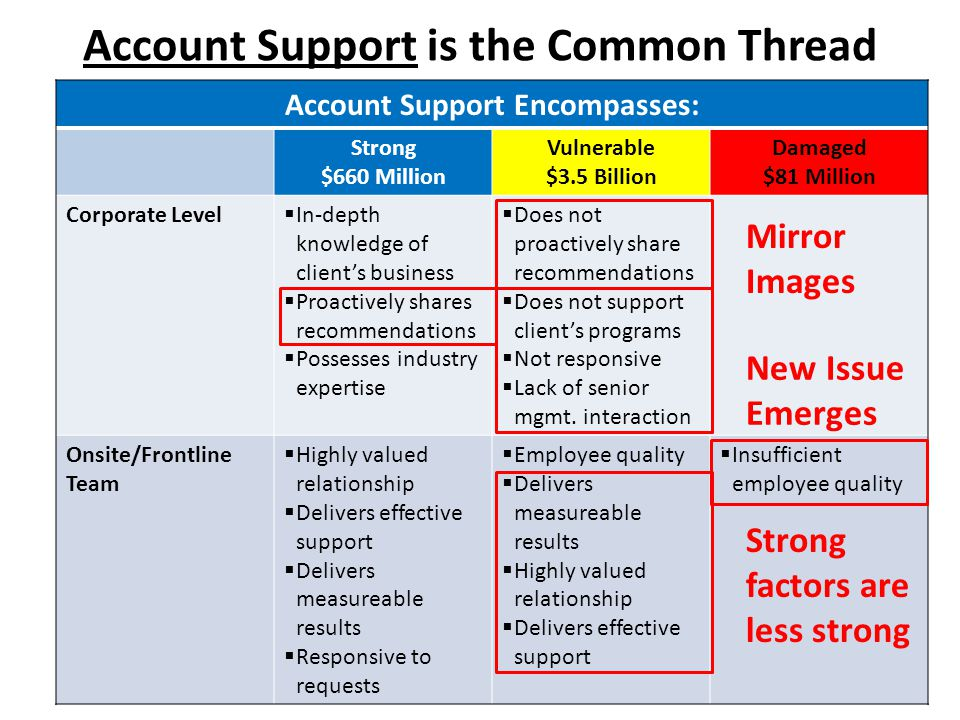 Account Support is the Common Thread Account Support Encompasses: Strong $660 Million Vulnerable $3.5 Billion Damaged $81 Million Corporate Level  In-depth knowledge of client's business  Proactively shares recommendations  Possesses industry expertise  Does not proactively share recommendations  Does not support client's programs  Not responsive  Lack of senior mgmt.